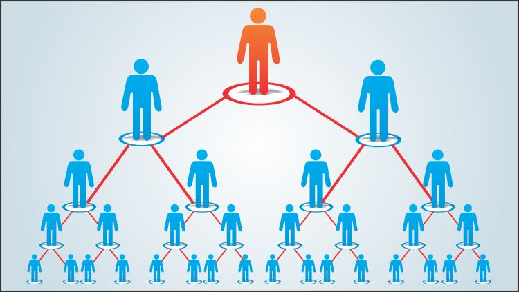 Multilevel Marketing Industry